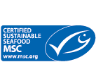 Logo_MSC_wHeader